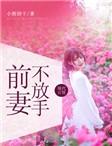前妻不放手小说试读 卫甜甜谢绍城小说全文章节列表
